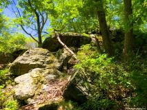 A Green Blue Mountain Reservation Summer--15