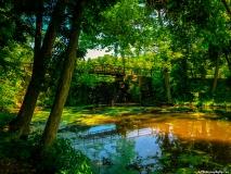 A Green Blue Mountain Reservation Summer--24