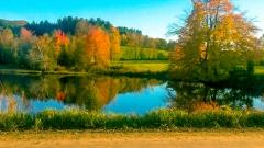 Pond in Starksboro VT near My Dad's House