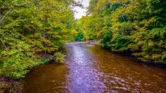 River near Monticello NY #1