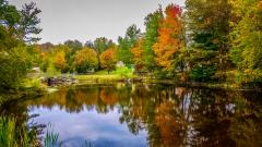 Lake near Monticello NY #14