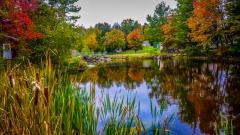 Lake near Monticello NY #12