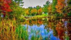 Lake near Monticello NY #13