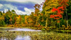Lake near Monticello NY #10
