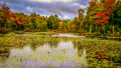 Lake near Monticello NY #9