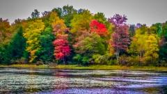 Lake near Monticello NY #19