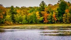 Lake near Monticello NY #21