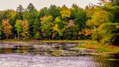 Lake near Monticello NY #5
