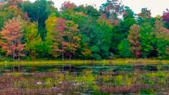 Lake near Monticello NY #16
