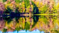 Lake near Monticello NY #15