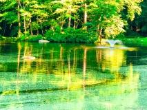 A-Green-Blue-Mountain-Reservation-Summer-1502