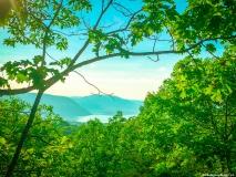 A-Green-Blue-Mountain-Reservation-Summer-1510