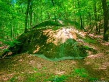 A-Green-Blue-Mountain-Reservation-Summer-37