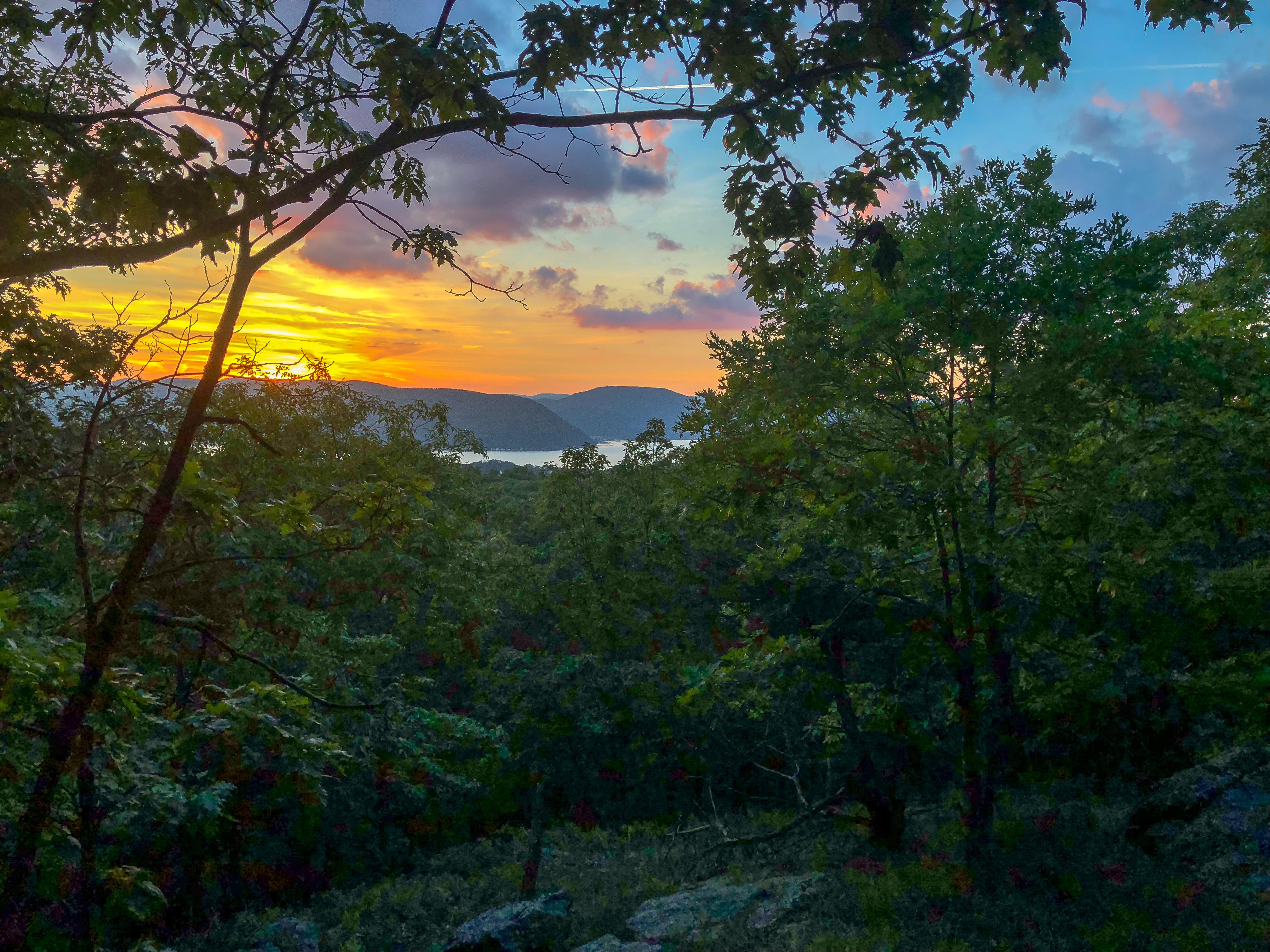 Blue Mountain Overlook #4